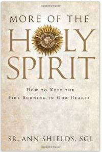 more of the holy spirit sr ann shields